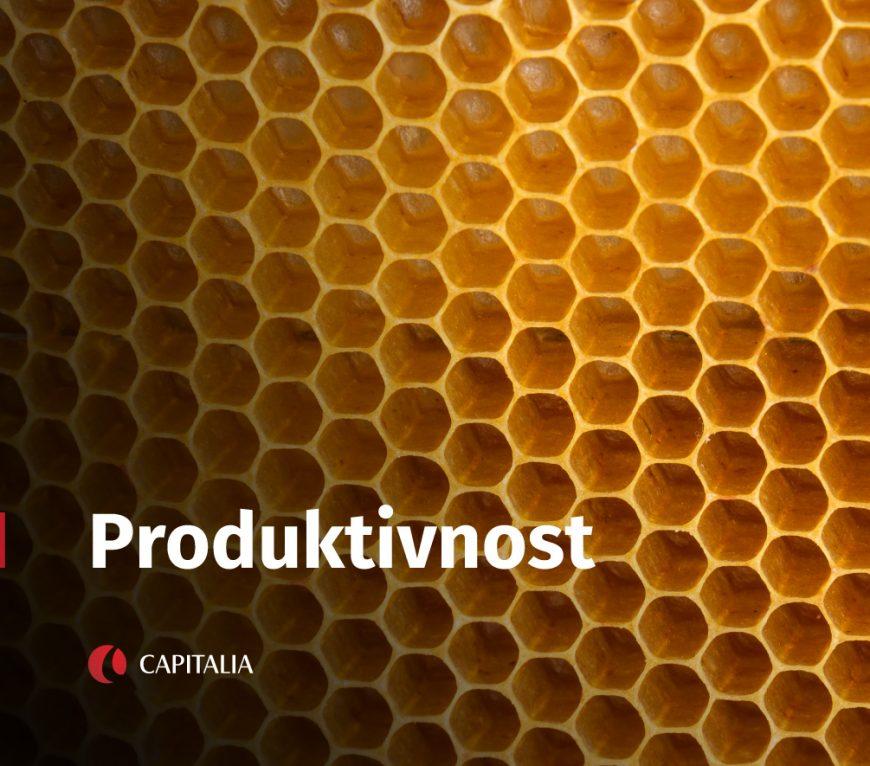 Produktivnost zaposlenih u komapniji